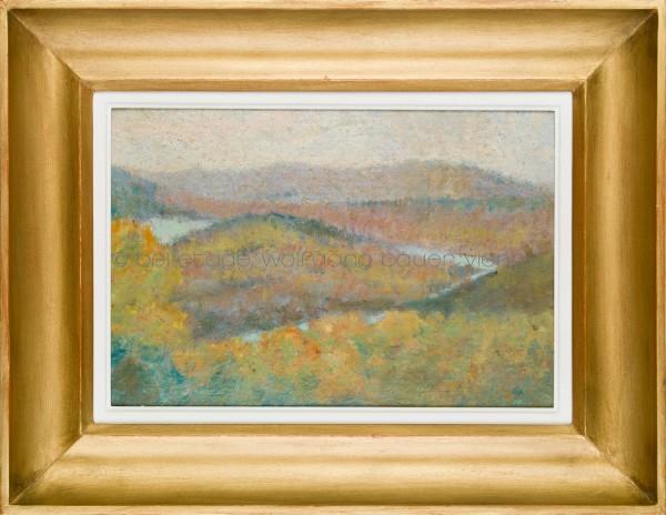 49_6_Junk_Herbstliche Donaulandschaft_mail